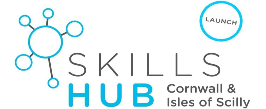 Launch of CIOS Skills Hub